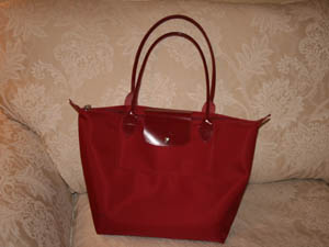 longchamp_bag.jpg