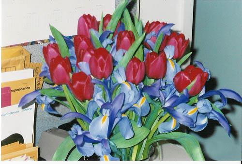 val_flowers_06.jpg