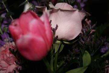 val_flowers_closeup.jpg